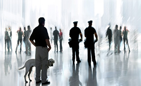 5 Basics For Implementing Effective Physical Security
