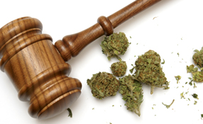 Cannabis And Security: The Road Ahead For The Legalization Of Recreational Marijuana