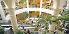 Shopping Centre Migrates To Digital CCTV With IndigoVision IP Video Technology