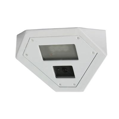Bosch EX36MNX902W-N Day/night CCTV Camera With 540 TVL Resolution