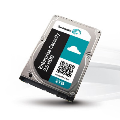 Seagate ST9250611NS Seagate® Constellation.2™ SATA 6 Gb/s 250 GB Hard Drive with Secure Encryption