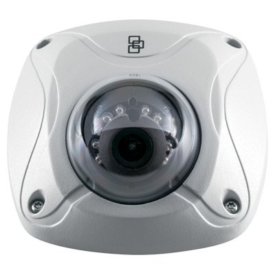 TruVision TVW-3101 Outdoor IR IP Wedge Dome Camera