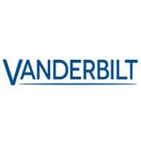 Vanderbilt 0981 Cotag - Ten-pack Of Passive Cotag Key-ring Tags (unprog.)
