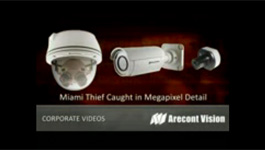 Arecont Vision Cameras Capture Purse-snatching Thief In Miami